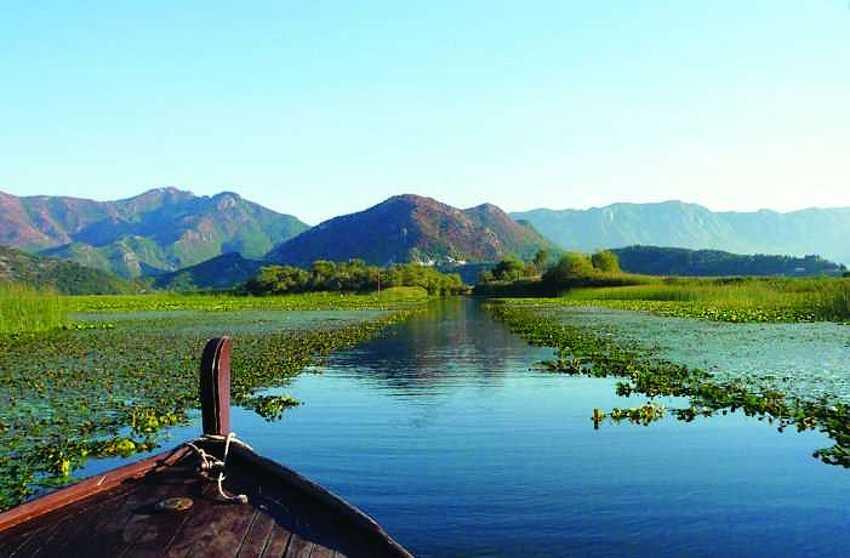 Скадарское озеро.